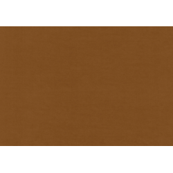 Antigua 713 Camello